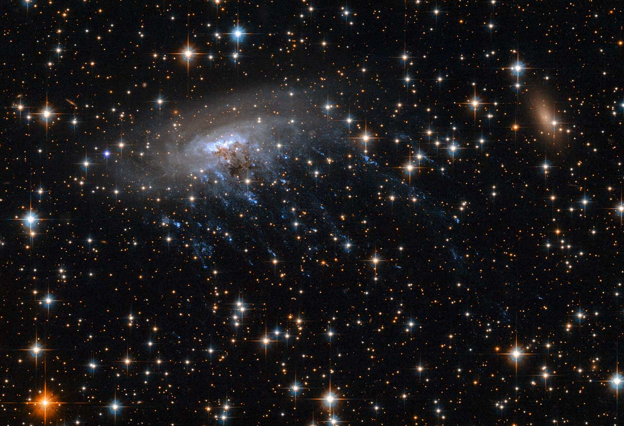 In this Hubble Space Telescope photo, spiral galaxy ESO 137-001 is being stripped of young stars, seen as blue streaks, by the galaxy cluster Abell 3627.  NASA, ESA Acknowledgements: Ming Sun (UAH), and Serge Meunier (Click to enlarge)