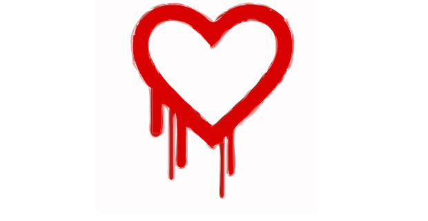 The Heartbleed bug was revealed in a cybersecurity report earlier this month. Credit: rejon / Wiki