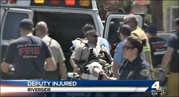 Deputy is hauled into ambulance after botching dog execution.
