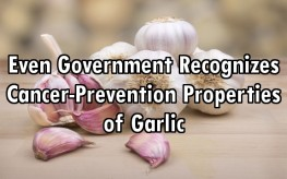 garlic_bulbs_cancer-263x164