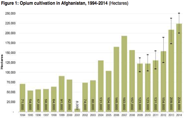 Opium Cultivation Hits New Record High in Afghanistan