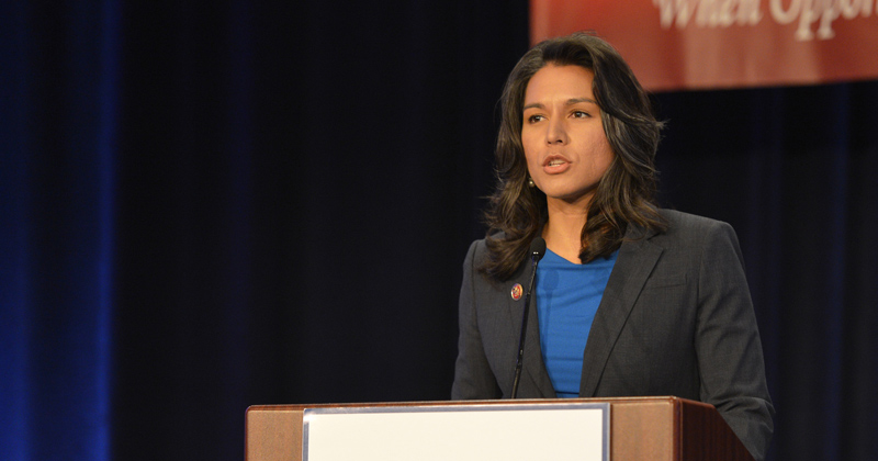 Tulsi Gabbard Lawsuit: Google Has 'Almost Total Control' over Key Elements of Elections