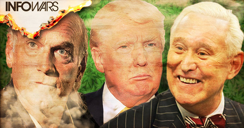 Roger Stone Lobbying Group Pushes Trump to Legalize Marijuana Nationwide
