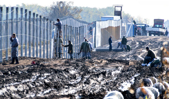 Hungary Builds Wall, Cuts Illegal Immigration By 99%