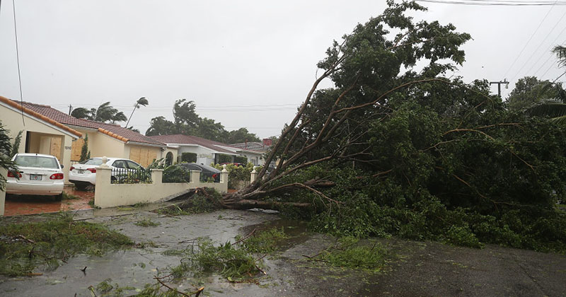 Assault on Keys, West Coast Florida in Irma's Bullseye