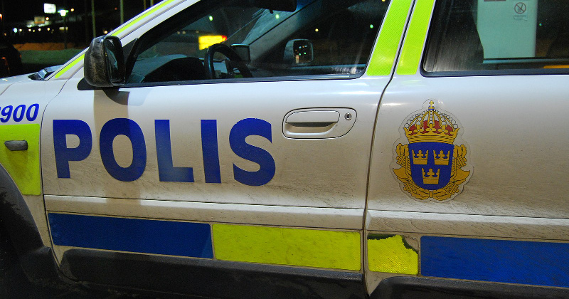 Sweden: Teen Murdered While Protecting Girl From Alleged Migrant Rapist