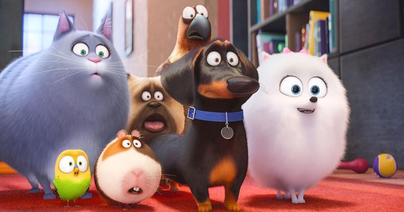 Liberal Movie Critics Slam 'Secret Life of Pets' for Praising Marriage