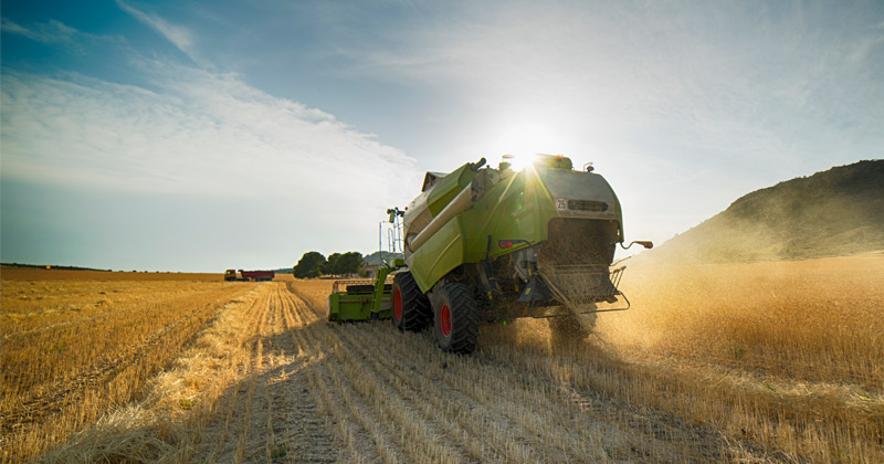 Farm Subsidized Are Corporate Welfare — And They Cost Us Plenty