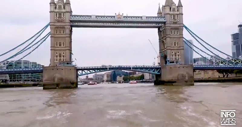 Special Report: The Lion of London Bridge