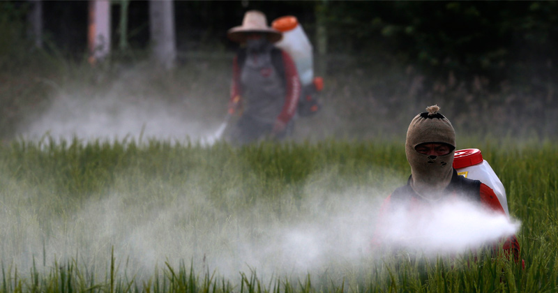 How US regulators embrace toxic pesticides & the corporations that make them