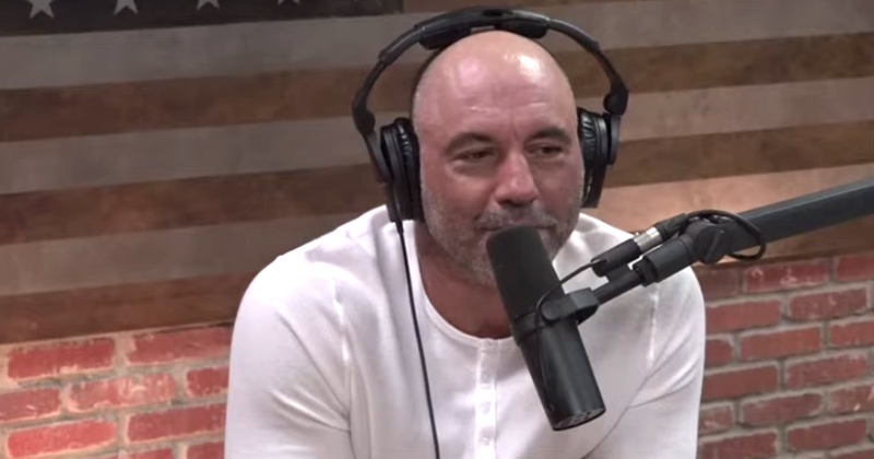 Joe Rogan Says 'Misunderstood' Alex Jones Was Right About Jeffrey Epstein: 'That Is A F--ing Fact'