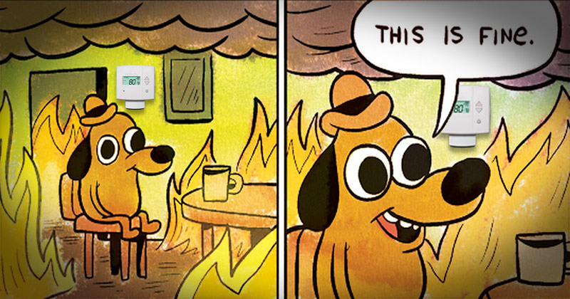 Cool Down with These Energy-Efficient Memes