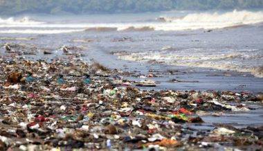 90 Per Cent of Plastic Waste Polluting Earth's Oceans Comes From Asia and Africa