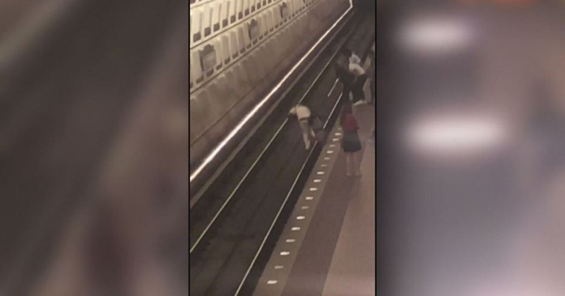 VIDEO: 'Nearly Half A Dozen Teens' Attack Man And Shove Him Onto Metro Tracks