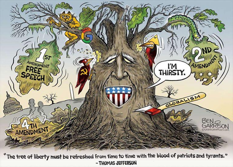 tree-liberty23525-768x551.jpg