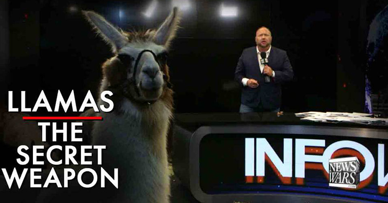 Llamas Are The Secret Weapon To Breaking Mass Mind Control