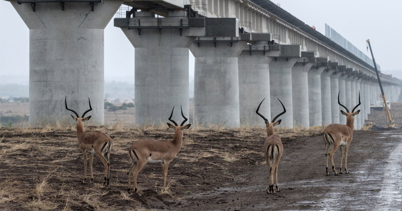 New Silk Road: Kenya's massive $1.5bn railway funded & built entirely by China