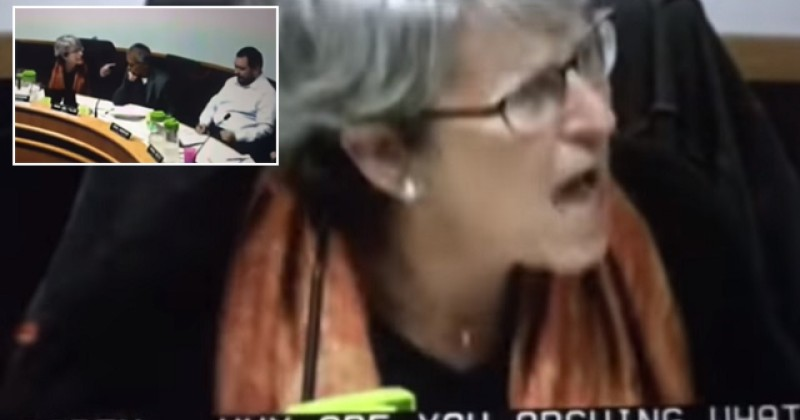 "Oak Park Trustee Susan Buchanan: ""You Are a White Male! Shut Up!"""