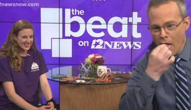 Texas Art Museum Encourages Children to Eat Bugs