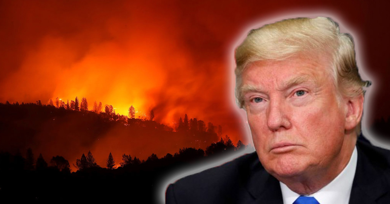 WarRoom: Liberals Blame Trump for California Wildfires and Killing of Religious Scholar Baghdadi