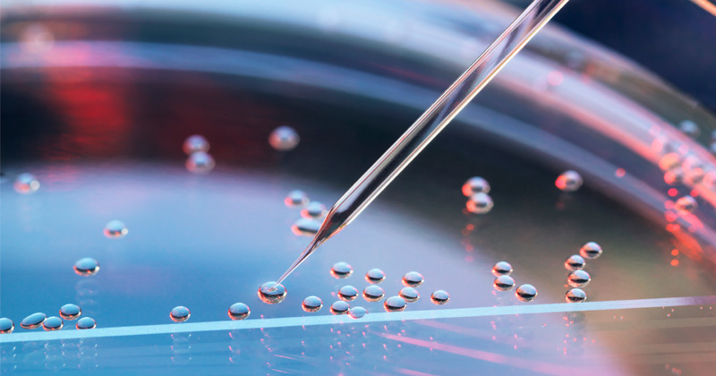 The FDA Wants to Control Your Stem Cells
