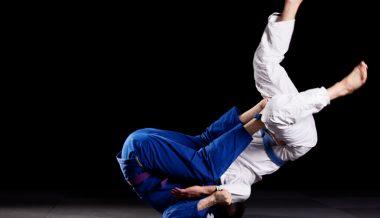 Proposed Virginia Law Would Outlaw Krav Maga, Brazilian Jiu Jitsu, Kickboxing, Tai Chi, Firearms Instruction and Self-Defense Training