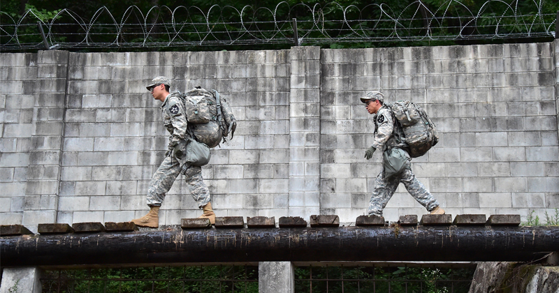 Army Biologists Working on New Class of High-Performance Materials