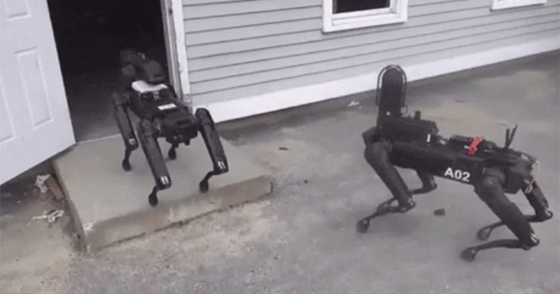 It Begins: Police Are Now Actively Using Robot Dogs