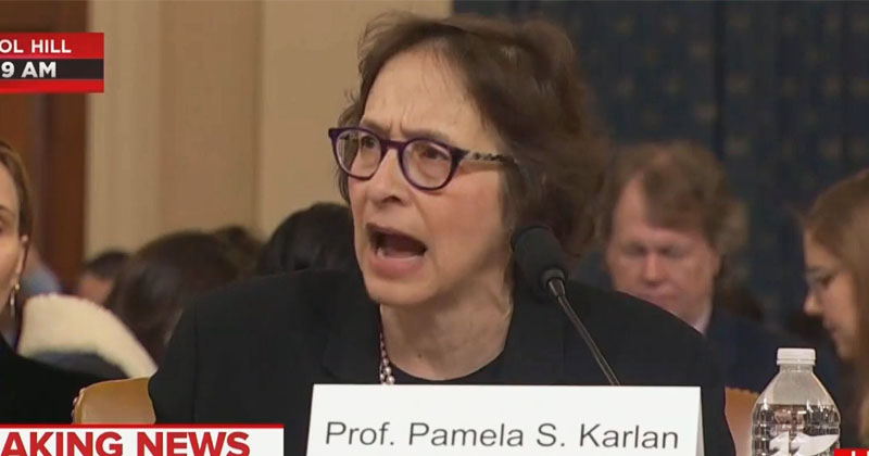 Dem Impeachment 'Witness' Goes On Unhinged Rant About How Trump Ruined Her Thanksgiving