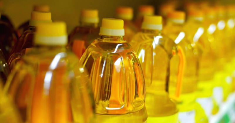 Soybean Oil Found to Cause Genetic Changes in the Brain Affecting Depression and Obesity