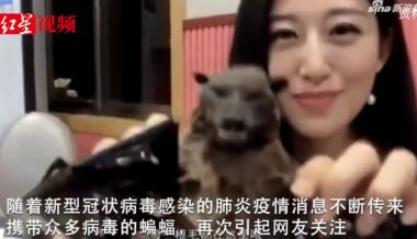 Chinese Government Forces TV Host Who Popularized Eating Bats to Apologize