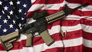 Virginia Senate Passes Red Flag Gun Seizure Bill Two Days After Second Amendment Rally