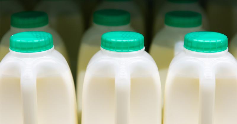 Soy-Boys & Unions Sink America's Biggest Milk Producer