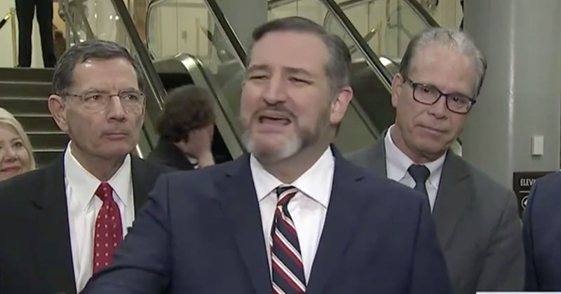 Ted Cruz Spars With Angry Media Over Hunter Biden Corruption Testimony
