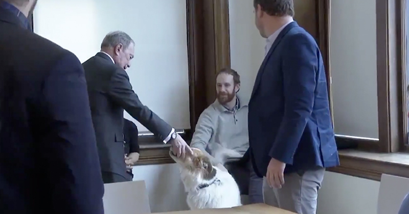 Weird Video: Mike Bloomberg Handshakes Dog's Mouth