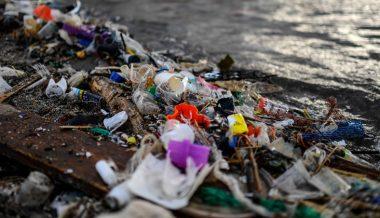 Study Raises Alarm Over Microplastics Found in Land, Air