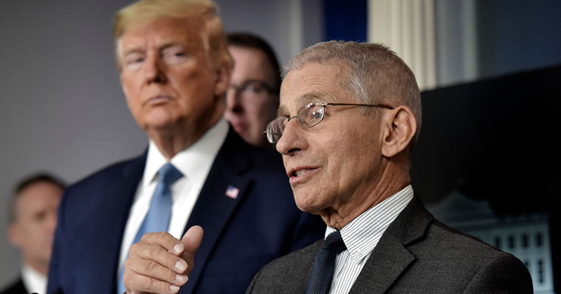 Video: Dr. Fauci Blasts Media's Constant Effort To 'Divide' Him And President Trump