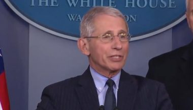 "Fauci Says Lockdown Will Continue Until There Are No ""New Cases"" of Coronavirus"