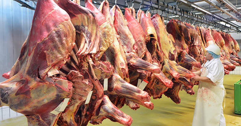"""The Food Supply Chain Is Breaking"" And We Are Being Warned That ""Meat Shortages"" Are Imminent"