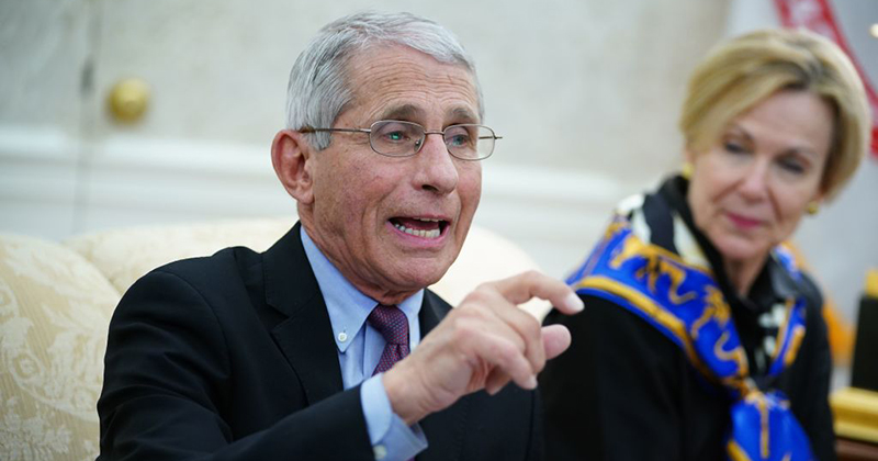 Report: Dr Fauci Backed Wuhan Lab Doing 'Crazy' Coronavirus Research