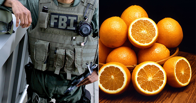 FBI Raids Detroit-Area Medical Facility 'For Using Intravenous Vitamin C to Treat COVID-19 Patients'