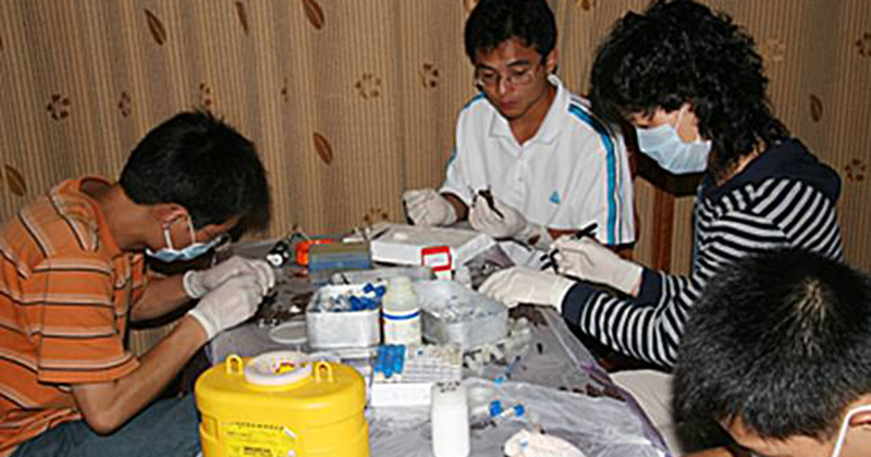 Photos of scientists wearing little protection as they handle deadly bat samples vanish from Wuhan website
