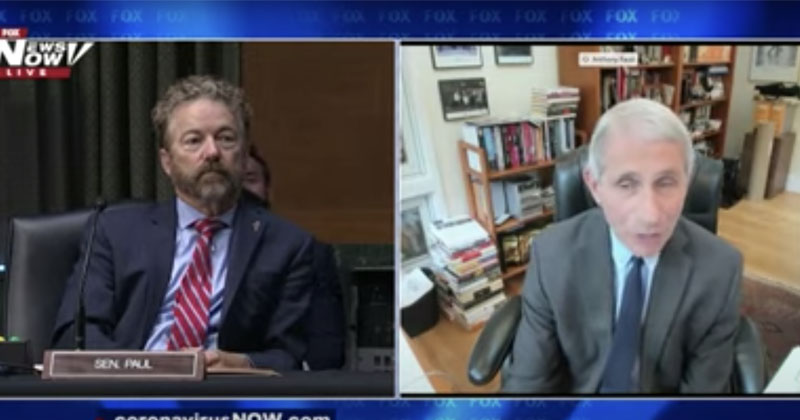 Rand Paul Blasts Lockdown, Tells Fauci 'You're Not The End-All'