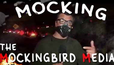 Mocking The Mockingbird Media