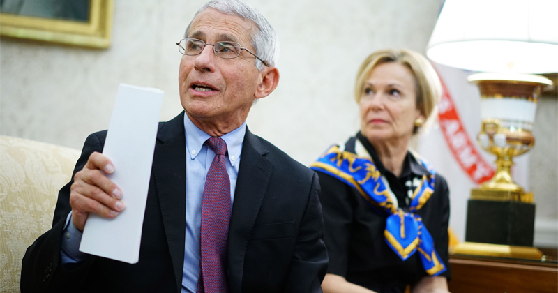 """Fauci's Long History of Pushing Vaccine """"Solutions"""""""
