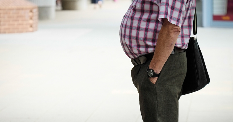 Important Role of Belly Fat in Aging Processes Identified