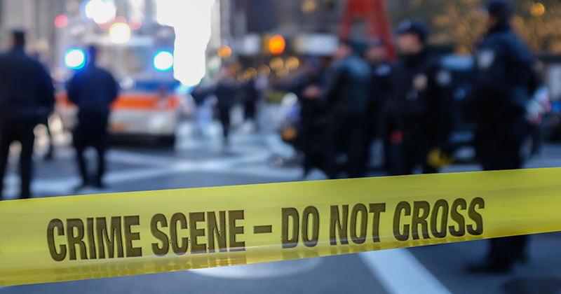 33-Year-Old Tech CEO's Decapitated, Dismembered Remains Found In NYC Apartment Near Electric Saw