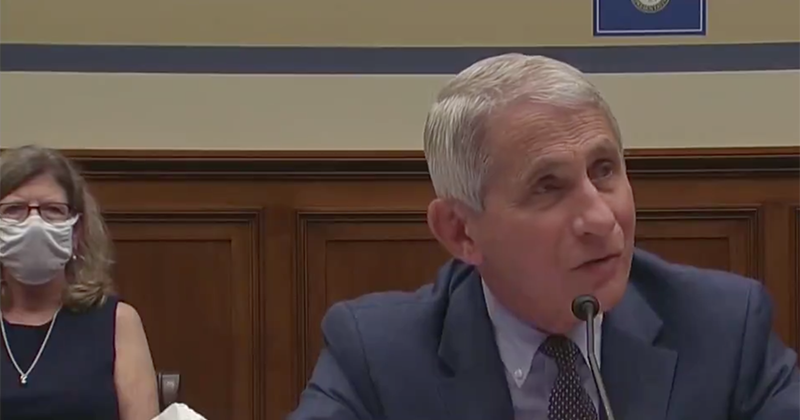 Trump Tweets Clip Of Fauci Refusing to Say Whether Protests Should be 'Limited' to Stop CV Spread