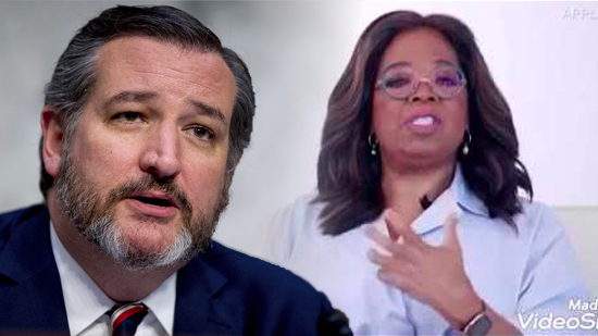 """""""What utter, racist BS"""": Ted Cruz Slams Oprah for White Privilege Lecture"""