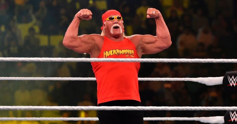 Hulk Hogan Claims His Friend Received a Mail-in Ballot For His Dog